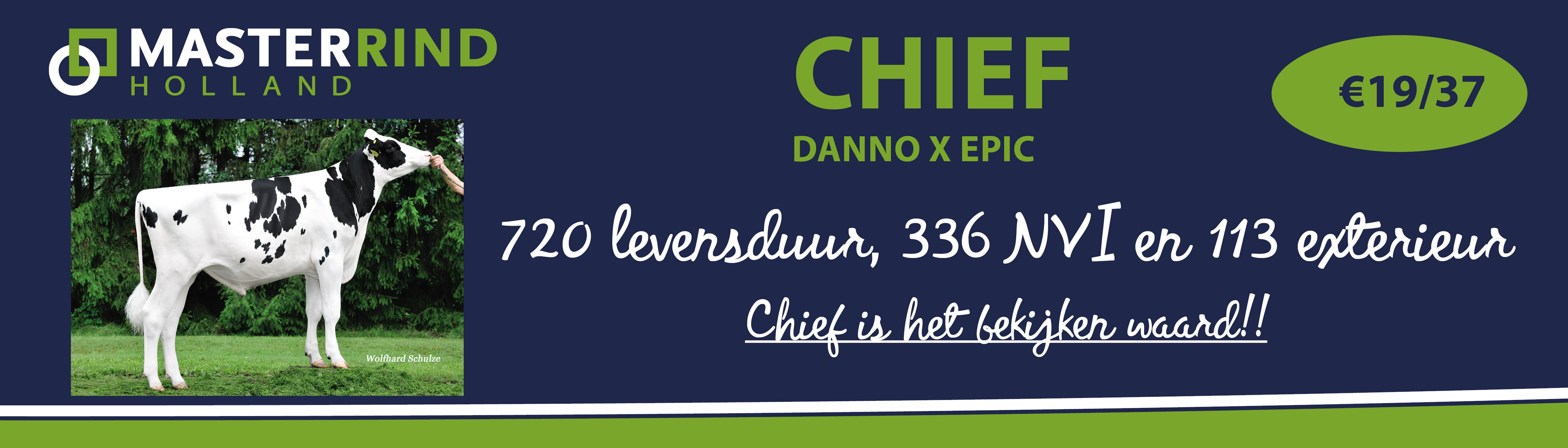 banner-Chief